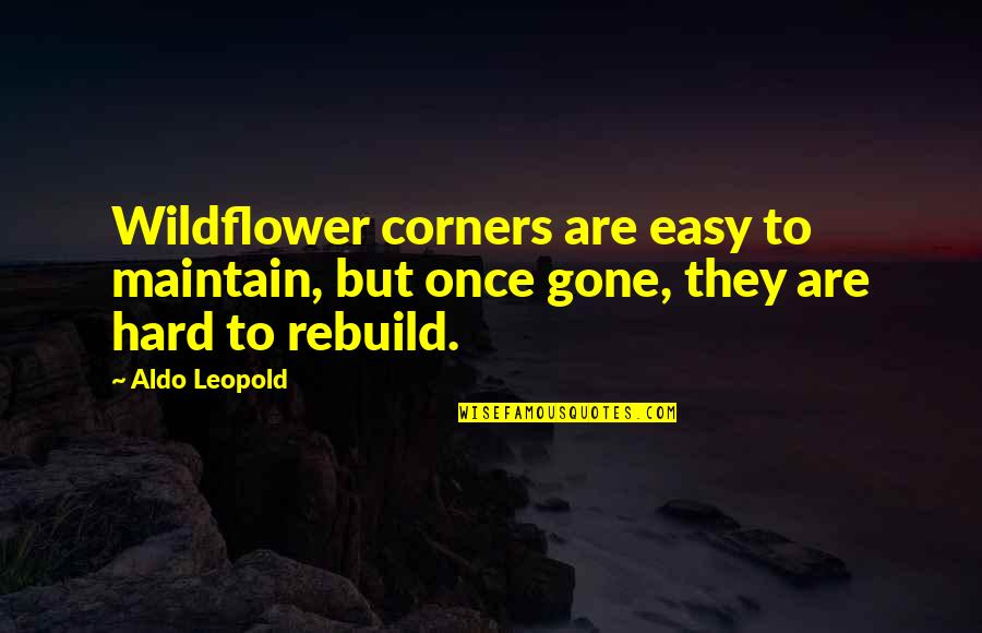 Wildflowers Quotes By Aldo Leopold: Wildflower corners are easy to maintain, but once