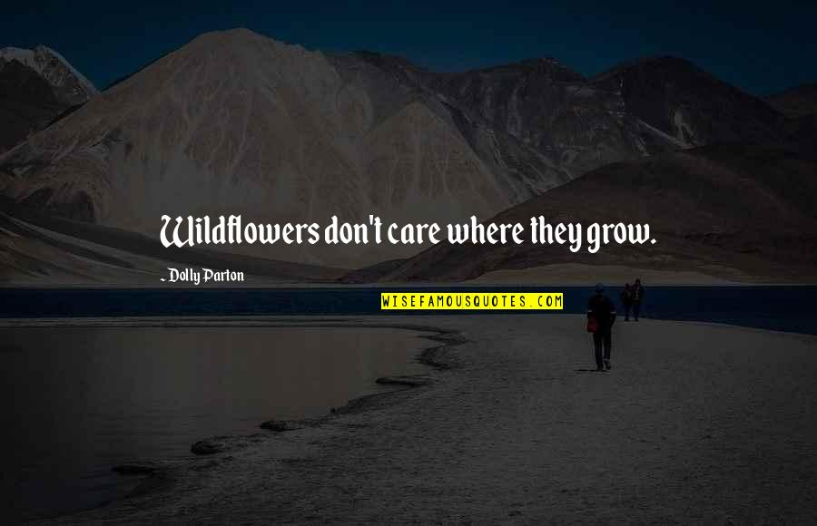 Wildflowers Quotes By Dolly Parton: Wildflowers don't care where they grow.