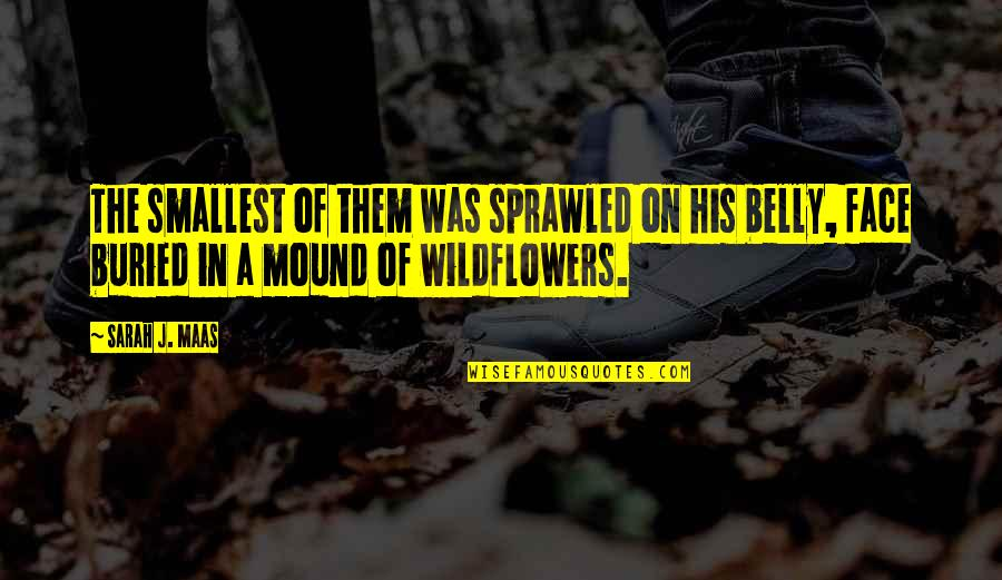 Wildflowers Quotes By Sarah J. Maas: The smallest of them was sprawled on his