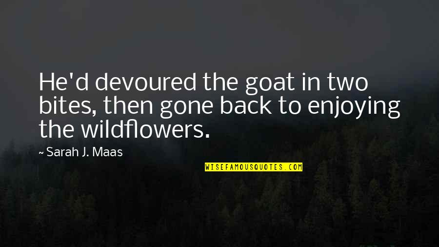 Wildflowers Quotes By Sarah J. Maas: He'd devoured the goat in two bites, then