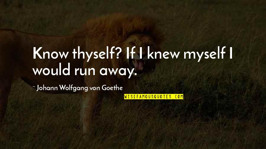 Will 2011 Movie Quotes By Johann Wolfgang Von Goethe: Know thyself? If I knew myself I would