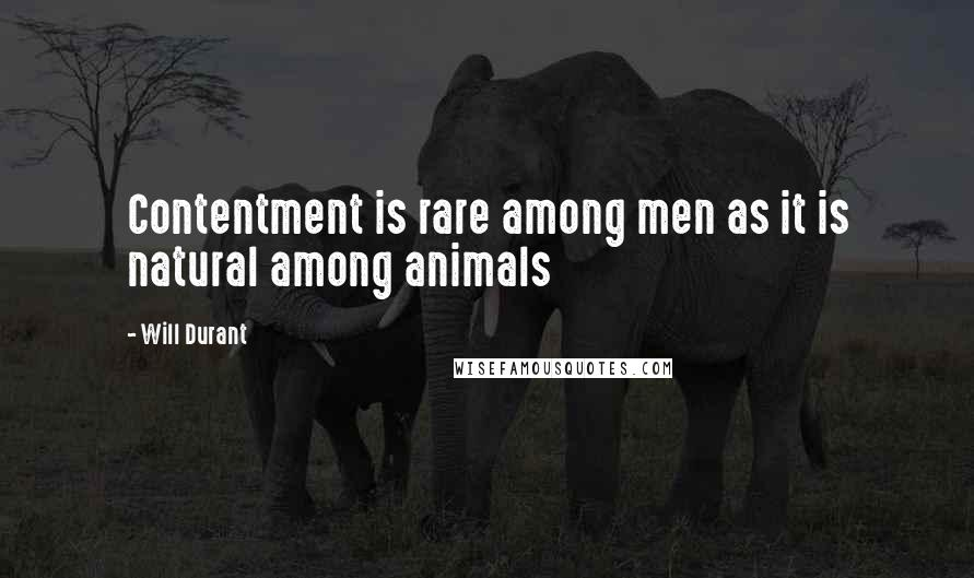 Will Durant quotes: Contentment is rare among men as it is natural among animals