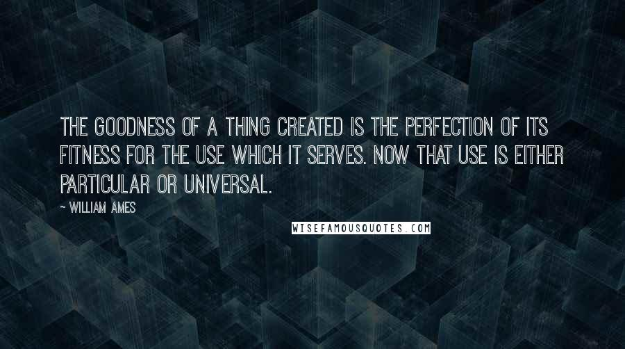 William Ames quotes: The goodness of a thing created is the perfection of its fitness for the use which it serves. Now that use is either particular or universal.