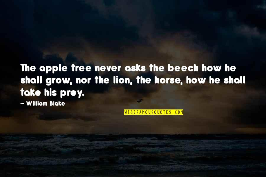 William Beech Quotes By William Blake: The apple tree never asks the beech how