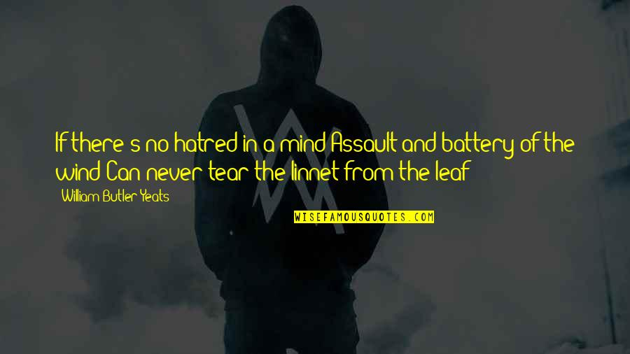 William Butler Yeats Quotes By William Butler Yeats: If there's no hatred in a mind Assault