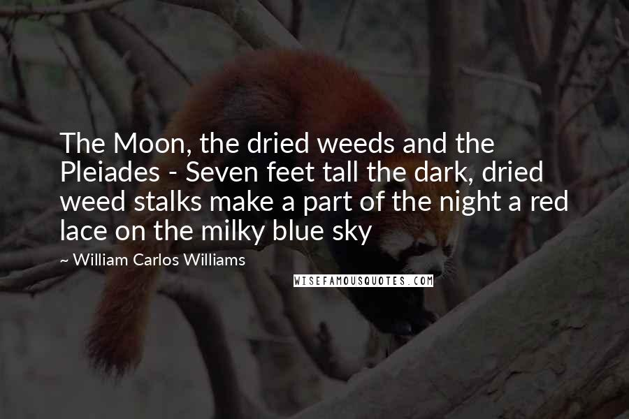 William Carlos Williams quotes: The Moon, the dried weeds and the Pleiades - Seven feet tall the dark, dried weed stalks make a part of the night a red lace on the milky blue