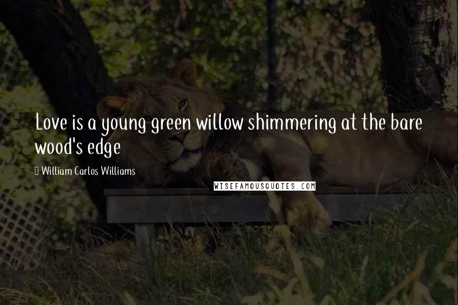 William Carlos Williams quotes: Love is a young green willow shimmering at the bare wood's edge