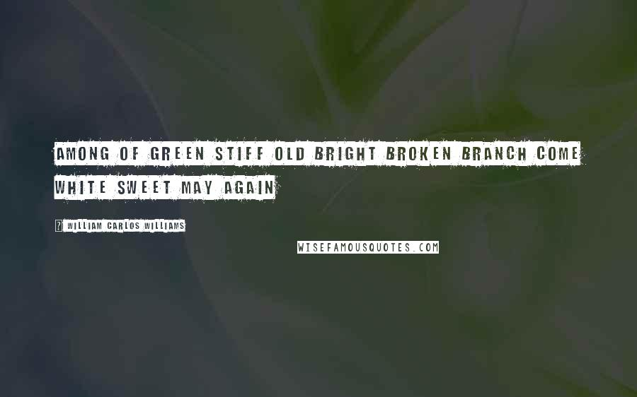 William Carlos Williams quotes: Among of green stiff old bright broken branch come white sweet May again