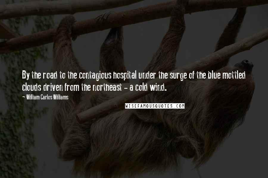 William Carlos Williams quotes: By the road to the contagious hospital under the surge of the blue mottled clouds driven from the northeast - a cold wind.