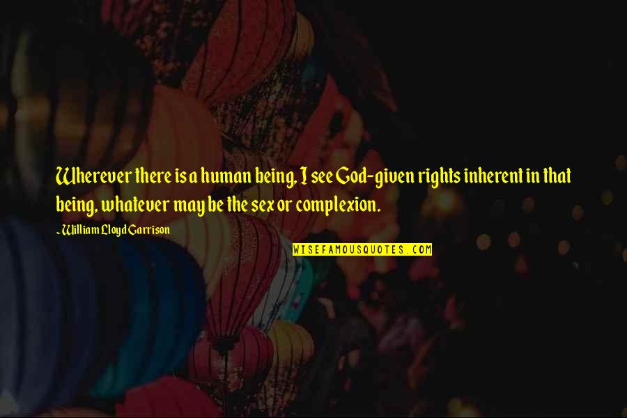 William F Garrison Quotes By William Lloyd Garrison: Wherever there is a human being, I see