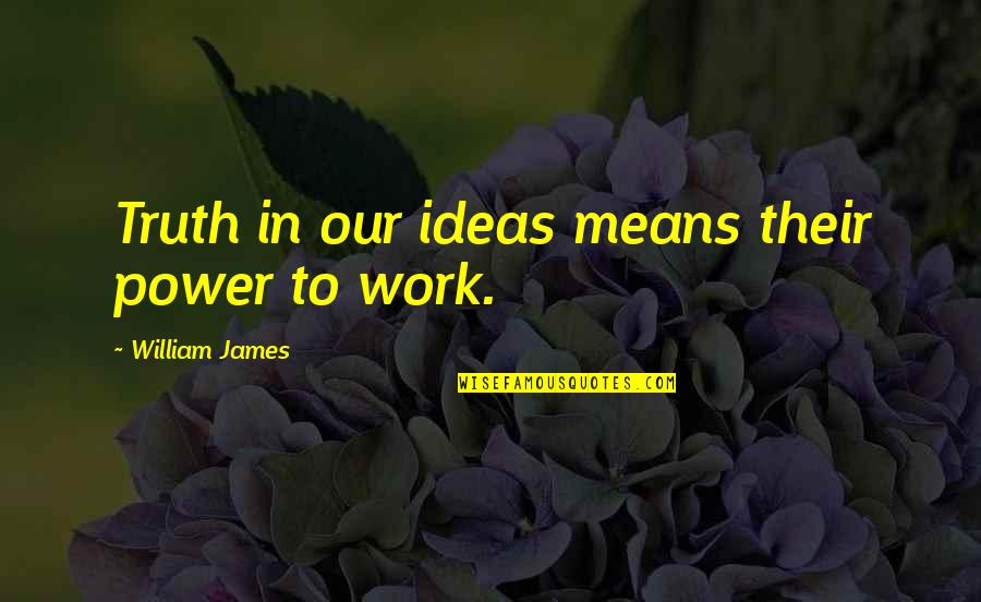 William James Quotes By William James: Truth in our ideas means their power to