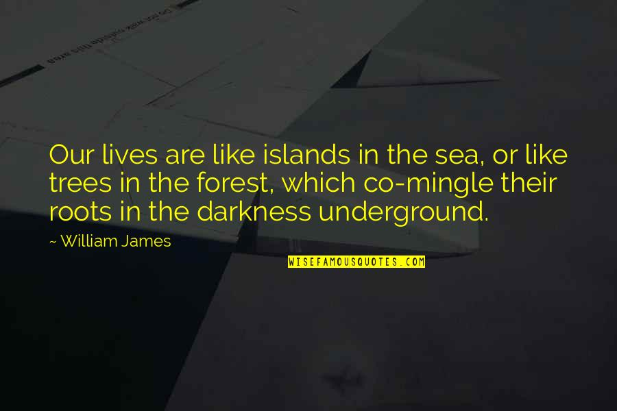 William James Quotes By William James: Our lives are like islands in the sea,