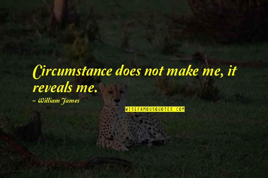 William James Quotes By William James: Circumstance does not make me, it reveals me.