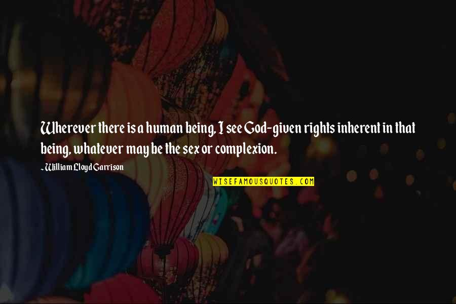 William Lloyd Garrison Quotes By William Lloyd Garrison: Wherever there is a human being, I see