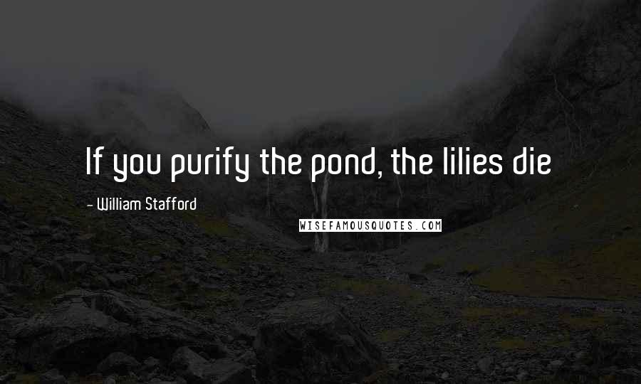 William Stafford quotes: If you purify the pond, the lilies die