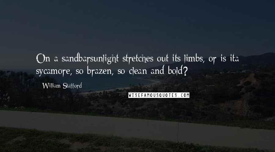 William Stafford quotes: On a sandbarsunlight stretches out its limbs, or is ita sycamore, so brazen, so clean and bold?