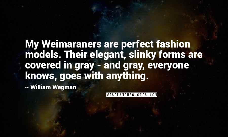 William Wegman quotes: My Weimaraners are perfect fashion models. Their elegant, slinky forms are covered in gray - and gray, everyone knows, goes with anything.