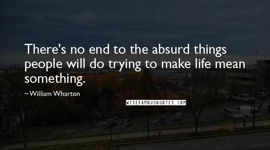 William Wharton quotes: There's no end to the absurd things people will do trying to make life mean something.