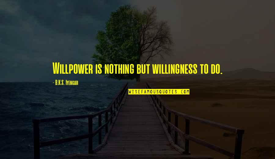 Willpower Quotes By B.K.S. Iyengar: Willpower is nothing but willingness to do.