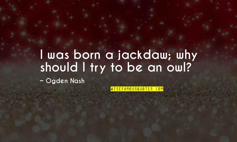 Wind Waker Beedle Quotes By Ogden Nash: I was born a jackdaw; why should I