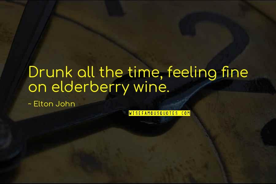 Wine And Time Quotes By Elton John: Drunk all the time, feeling fine on elderberry