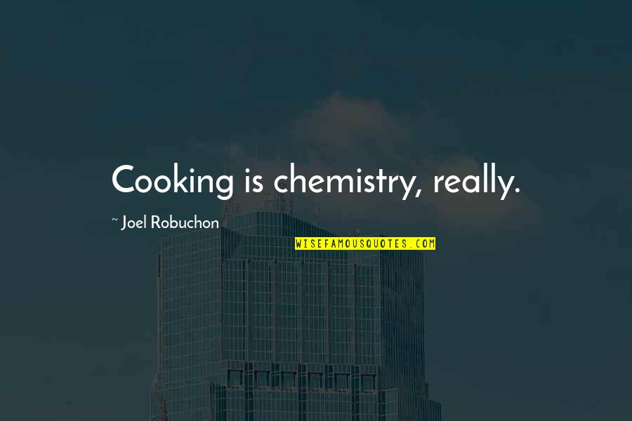 Winston Churchill Gin Quotes By Joel Robuchon: Cooking is chemistry, really.