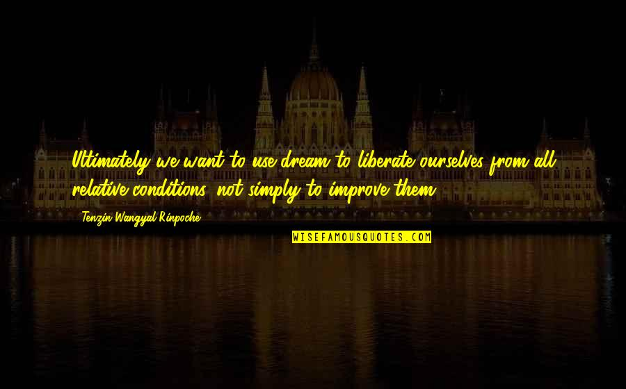 Winston Churchill Naval Quotes By Tenzin Wangyal Rinpoche: Ultimately we want to use dream to liberate