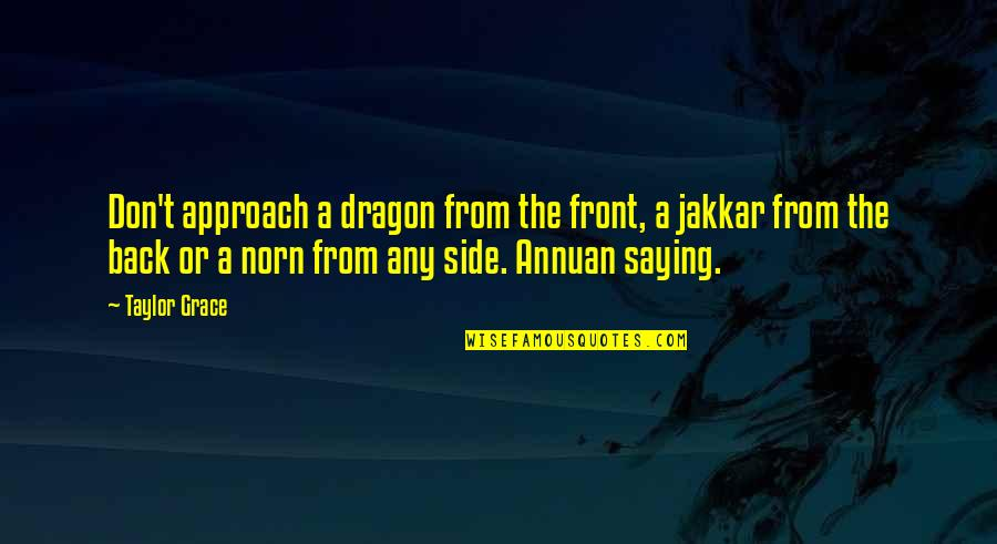 Winter Sleep Film Quotes By Taylor Grace: Don't approach a dragon from the front, a