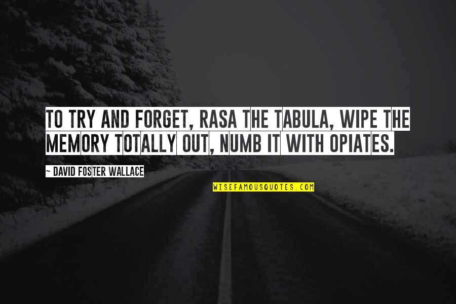 Wipe Out Quotes By David Foster Wallace: To try and forget, rasa the tabula, wipe