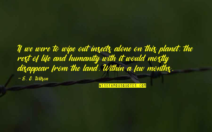 Wipe Out Quotes By E. O. Wilson: If we were to wipe out insects alone