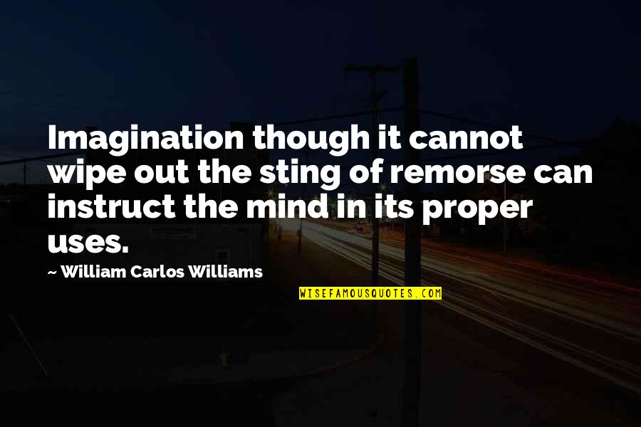 Wipe Out Quotes By William Carlos Williams: Imagination though it cannot wipe out the sting