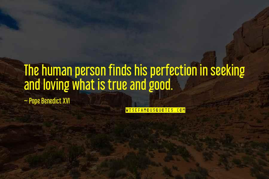 Wisdom And Love Quotes By Pope Benedict XVI: The human person finds his perfection in seeking