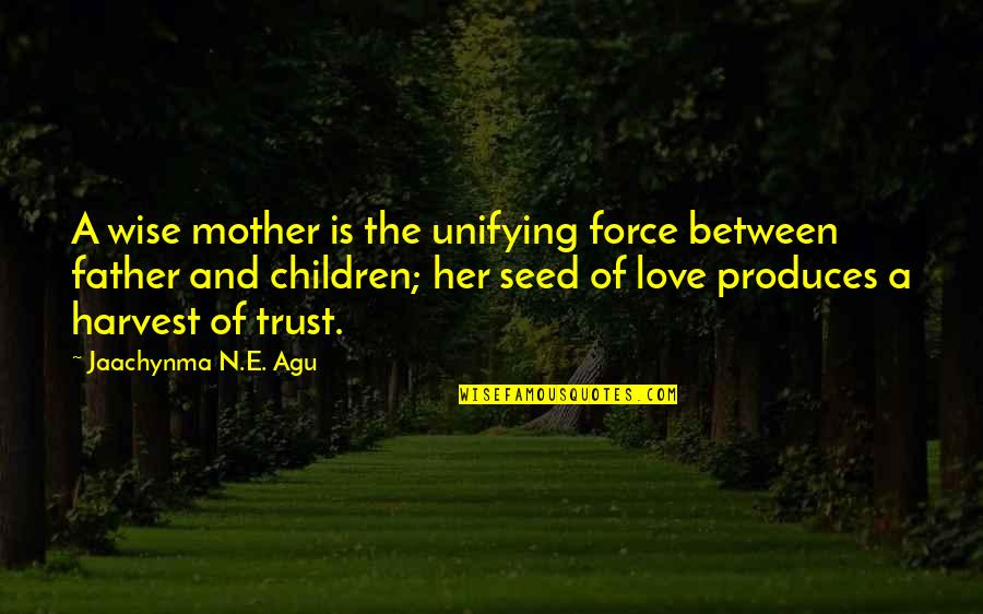 Wise Marriage Quotes By Jaachynma N.E. Agu: A wise mother is the unifying force between