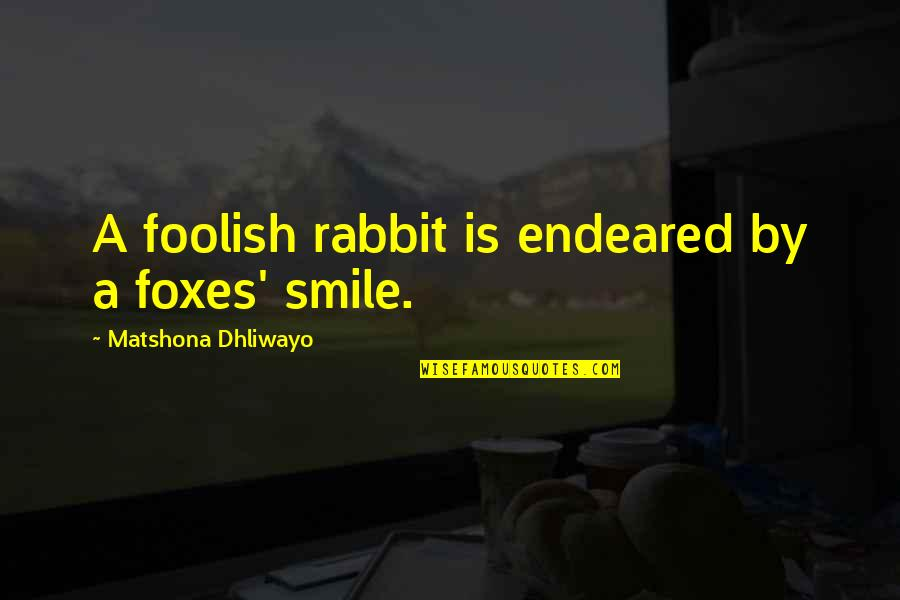 Wise Quotes Nd Quotes By Matshona Dhliwayo: A foolish rabbit is endeared by a foxes'