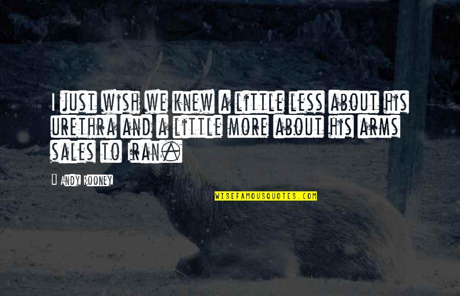 Wish I Knew Quotes By Andy Rooney: I just wish we knew a little less