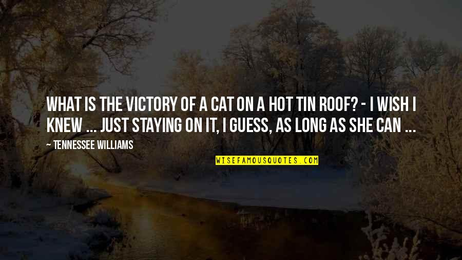 Wish I Knew Quotes By Tennessee Williams: What is the victory of a cat on