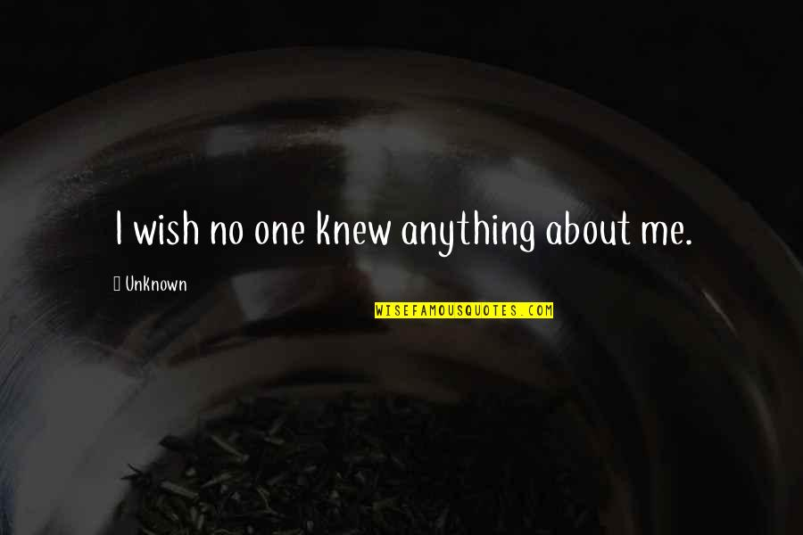 Wish I Knew Quotes By Unknown: I wish no one knew anything about me.