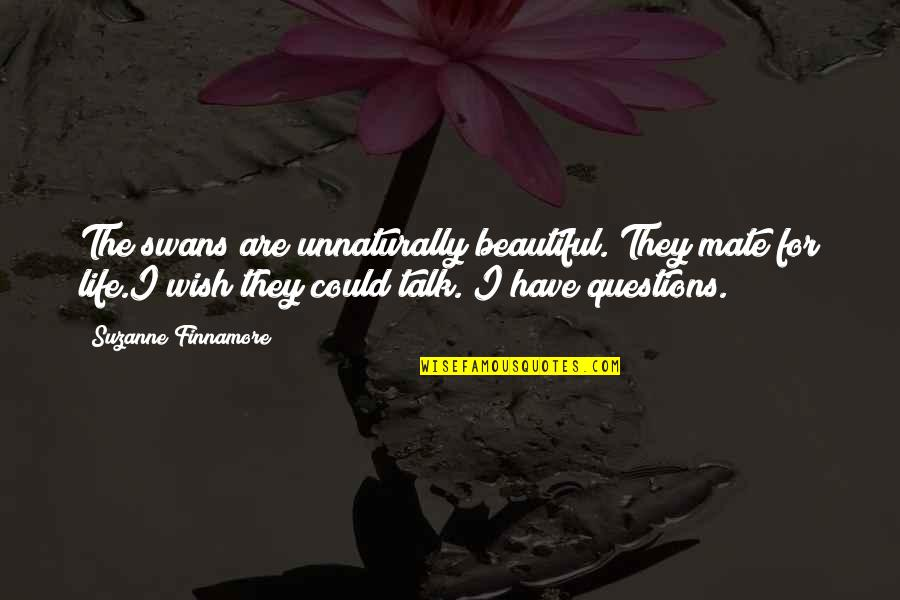 Wish We Could Talk Quotes By Suzanne Finnamore: The swans are unnaturally beautiful. They mate for