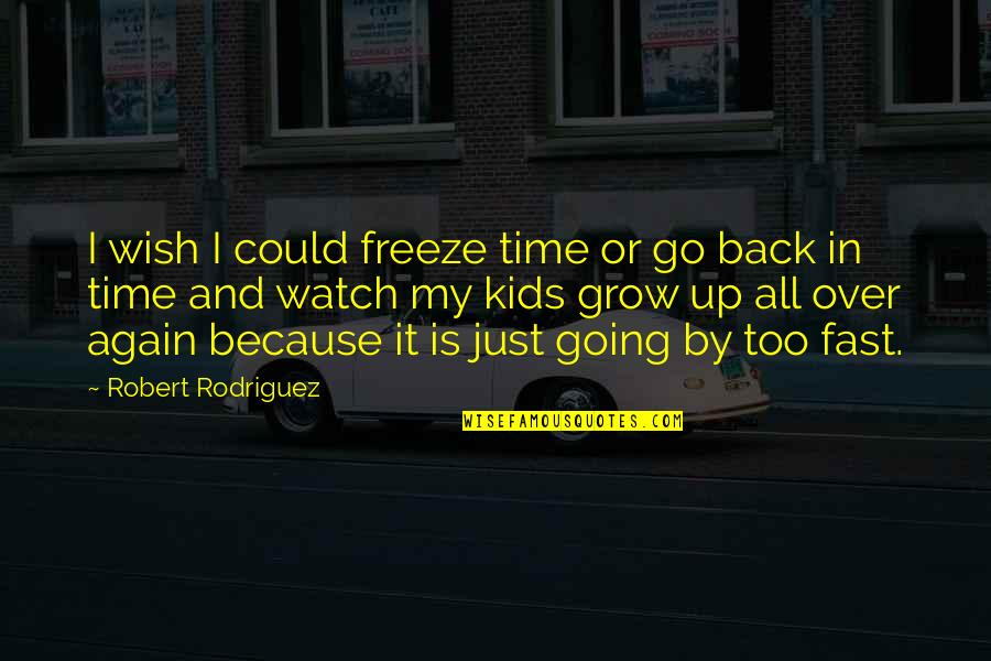 Wish You Were Back Quotes By Robert Rodriguez: I wish I could freeze time or go