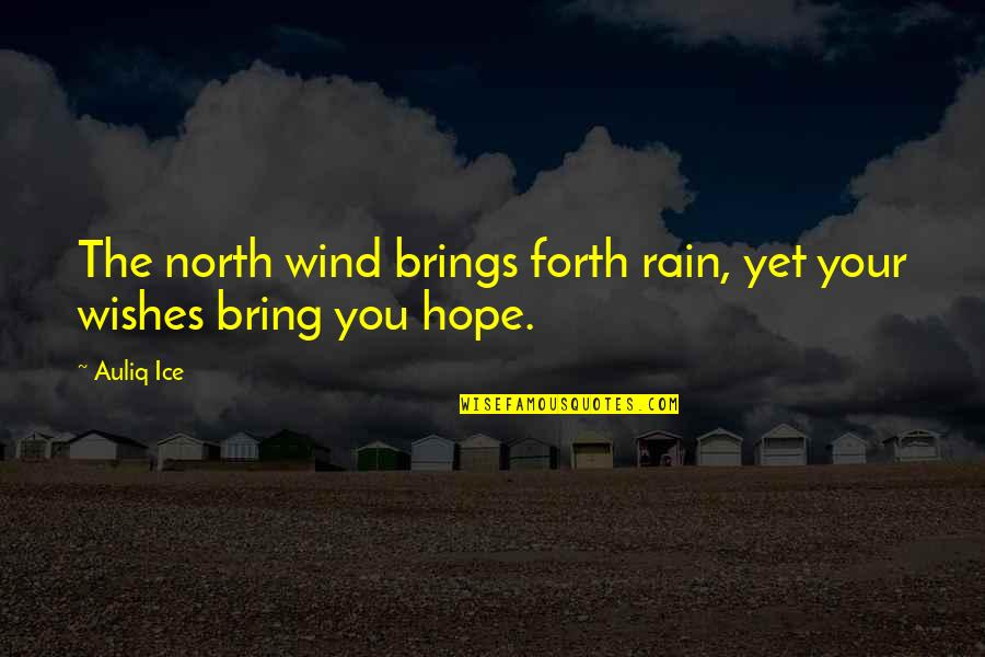 Wishes For Success Quotes By Auliq Ice: The north wind brings forth rain, yet your