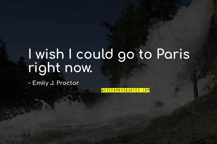 Wishing The Best For Your Ex Quotes By Emily J. Proctor: I wish I could go to Paris right