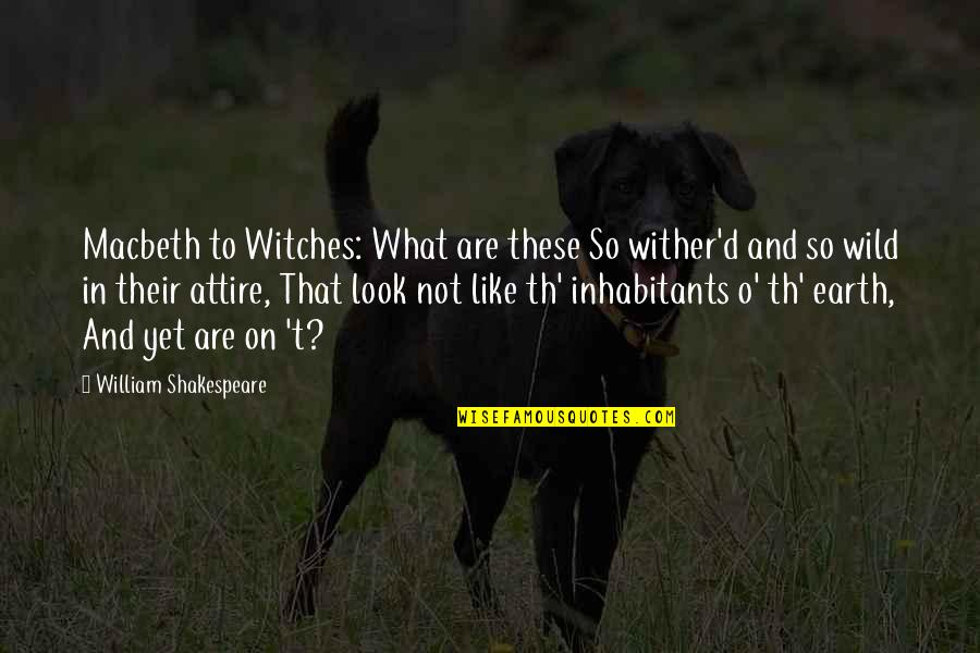 Witches Macbeth Quotes By William Shakespeare: Macbeth to Witches: What are these So wither'd