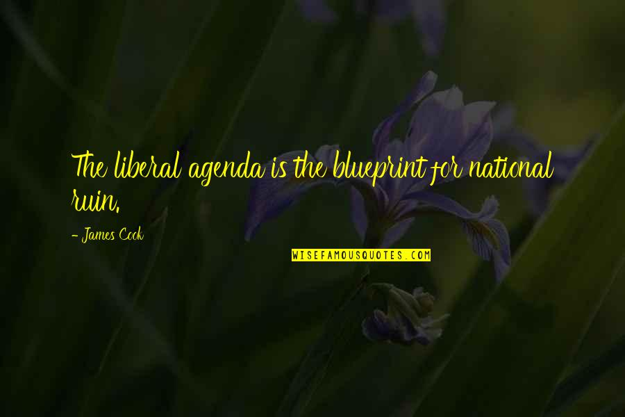 Within The Ruins Quotes By James Cook: The liberal agenda is the blueprint for national