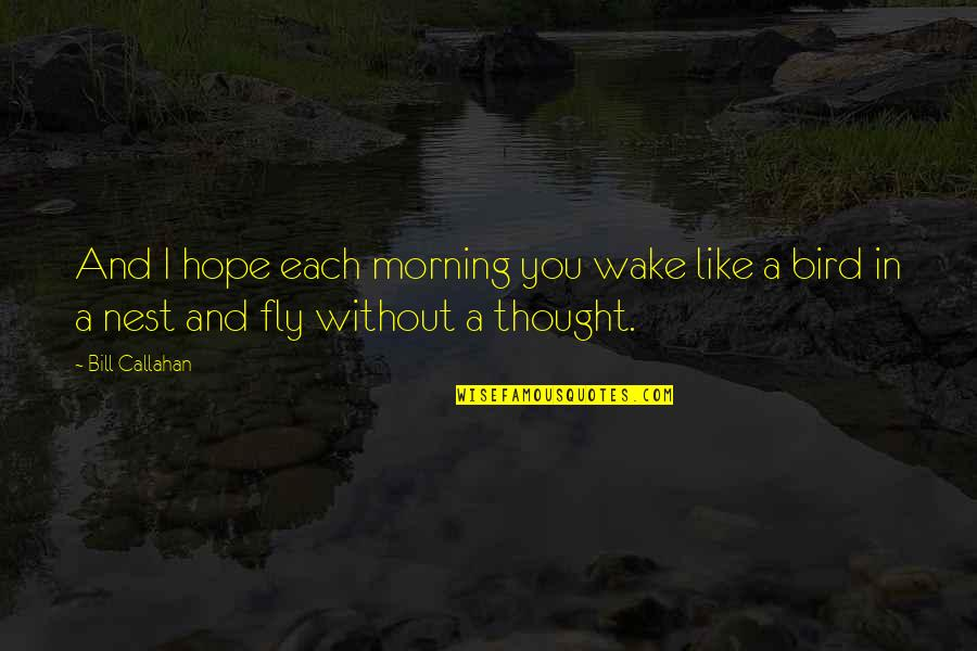 Without Hope Quotes By Bill Callahan: And I hope each morning you wake like