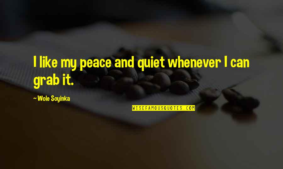 Wole Soyinka Quotes By Wole Soyinka: I like my peace and quiet whenever I