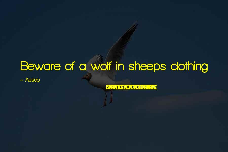 Wolf And Sheep Quotes By Aesop: Beware of a wolf in sheep's clothing.