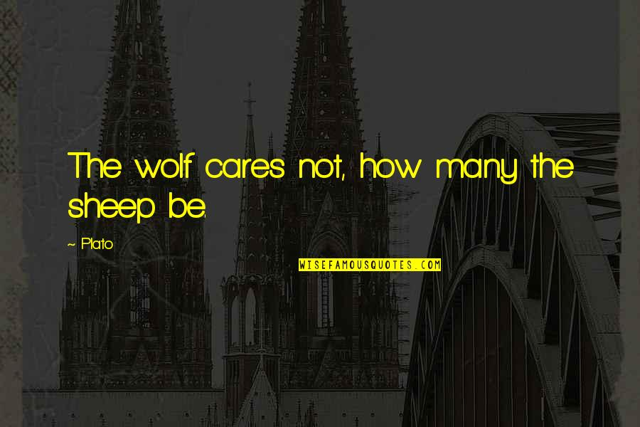 Wolf And Sheep Quotes By Plato: The wolf cares not, how many the sheep