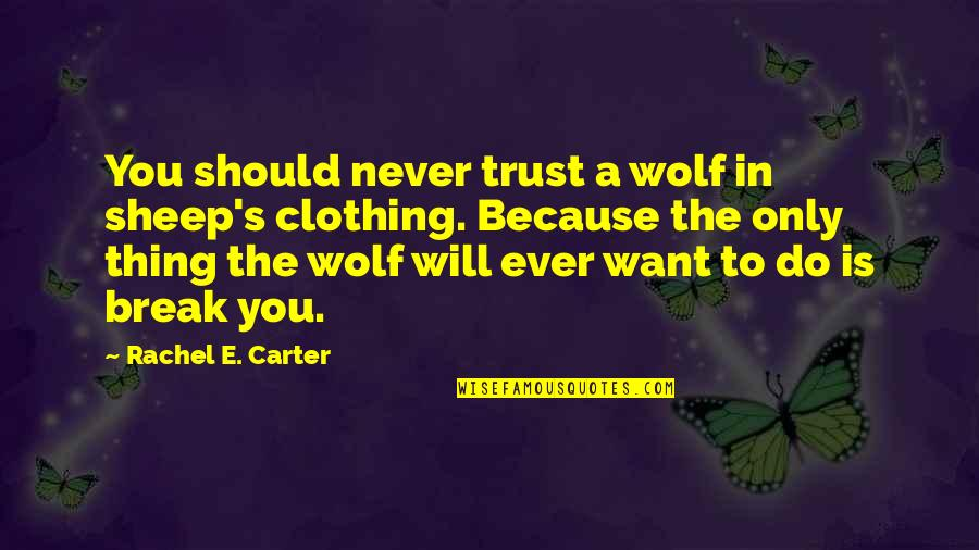 Wolf And Sheep Quotes By Rachel E. Carter: You should never trust a wolf in sheep's