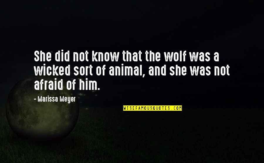 Wolf O'donnell Quotes By Marissa Meyer: She did not know that the wolf was