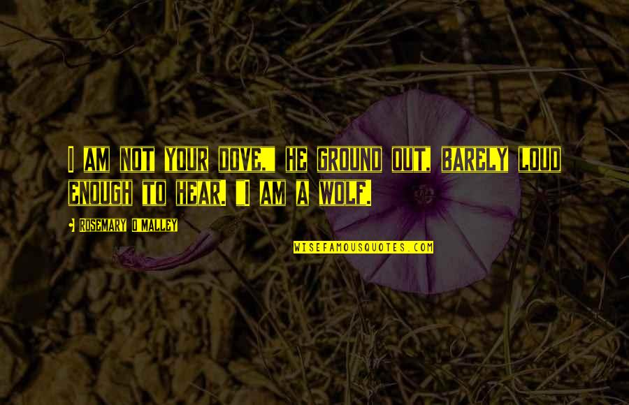 "Wolf O'donnell Quotes By Rosemary O'Malley: I am not your dove,"" he ground out,"